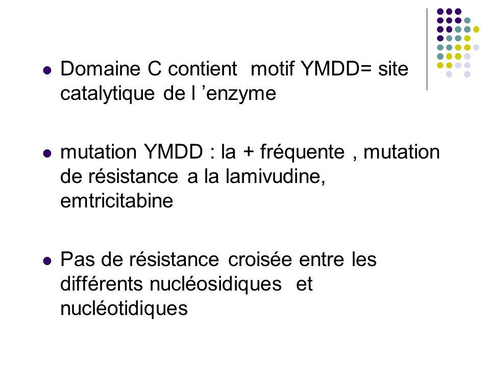 Domaine C contient motif YMDD= site catalytique de l enzyme mutation YMDD : la + fréquente, mutation de résistance a la lamivudine, emtricitabine Pas