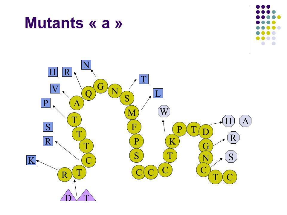 Mutants « a » R T C M F P T S T N T G Q A T K S CC C PT D G N C TC K R S P V HR N T L S R AH W DT