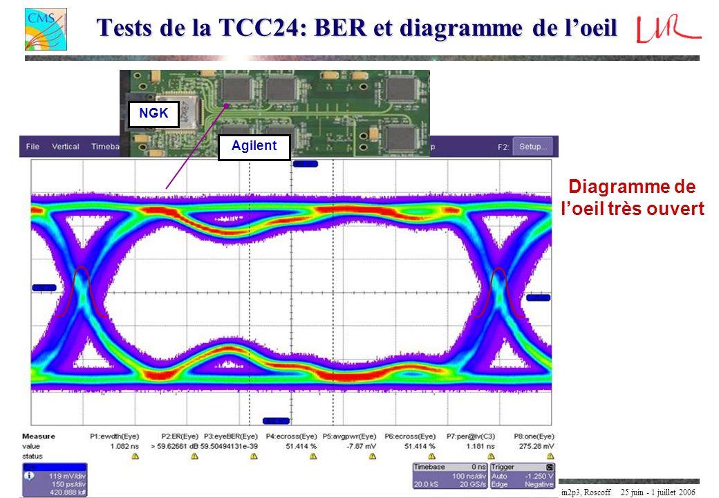 Yannick Geerebaert LLR / IN2P3 / CNRS / Ecole Polytechnique Palaiseau FranceEcole délectronique numérique in2p3, Roscoff 25 juin - 1 juillet 2006 24/3