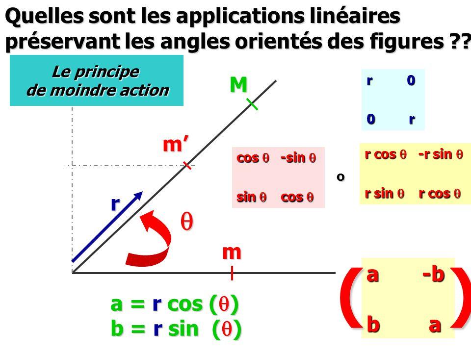 m m q M r Quelles sont les applications linéaires préservant les angles orientés des figures ?? Le principe de moindre action cos q -sin q sin q cos q