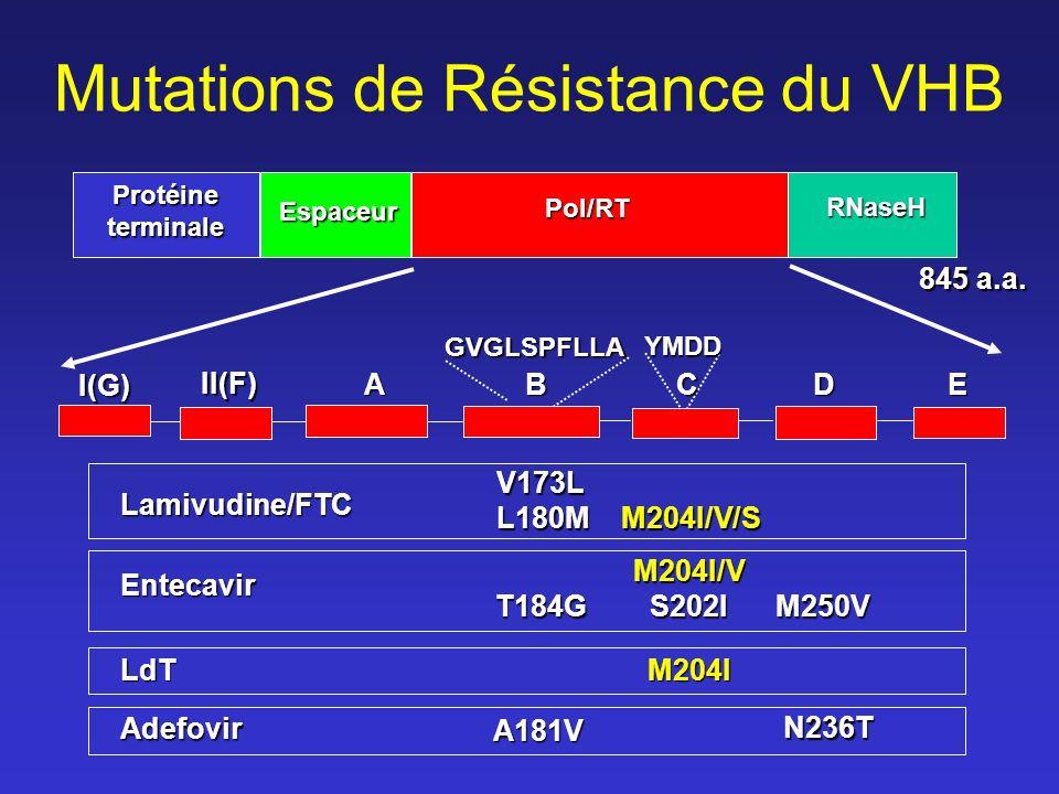 Mutations de Résistance du VHB 845 a.a.