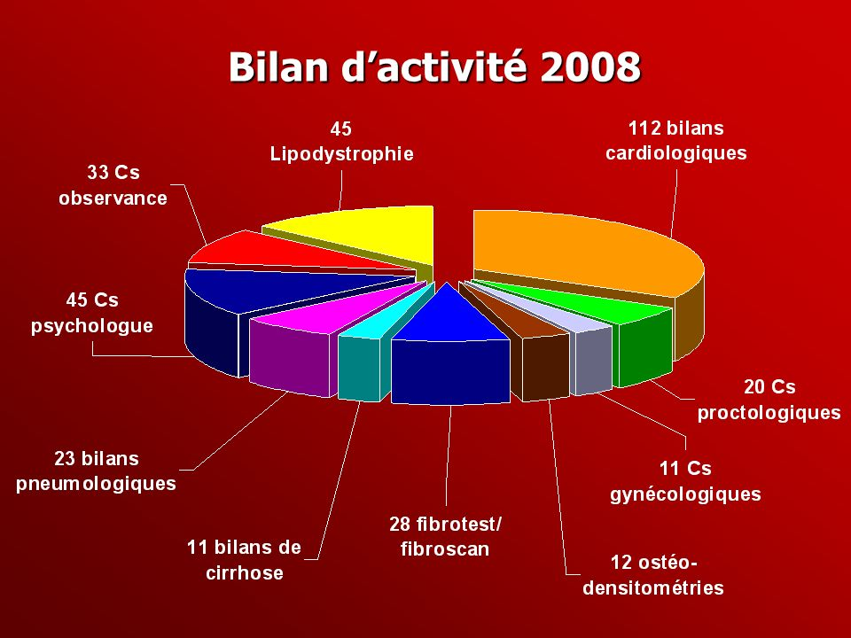 Bilan dactivité 2008