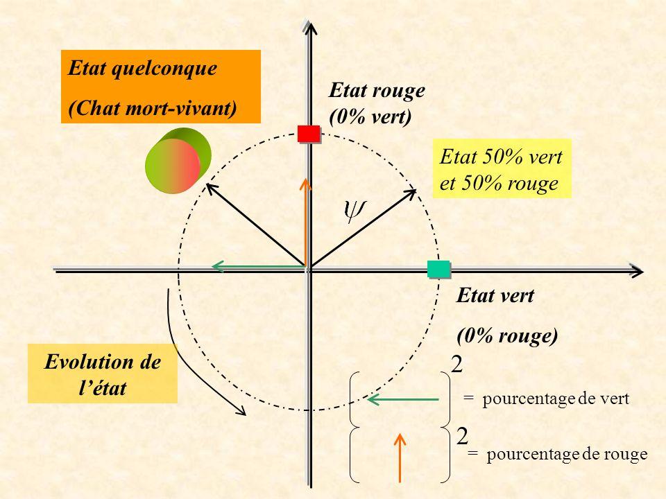 Etat vert (0% rouge) Etat rouge (0% vert) Etat 50% vert et 50% rouge Etat quelconque (Chat mort-vivant) Evolution de létat 2 = pourcentage de vert 2 =