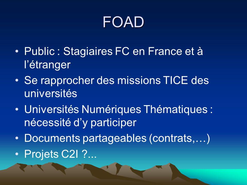 FOAD Public : Stagiaires FC en France et à létranger Se rapprocher des missions TICE des universités Universités Numériques Thématiques : nécessité dy