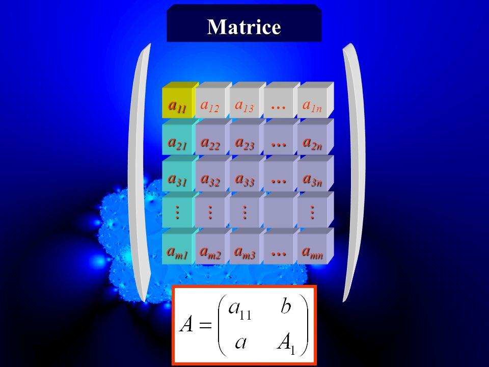 a m1 a m2 a m3 … a mn a 31 a 32 a 33 … a 3n a 21 a 22 a 23 … a 2n a 11 a 12 a 13 … a 1n Matrice