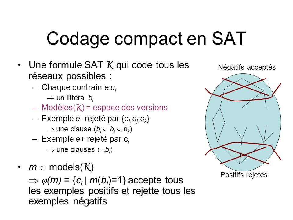 Codage compact en SAT Une formule SAT K qui code tous les réseaux possibles : –Chaque contrainte c i un littéral b i –Modèles( K ) = espace des versio