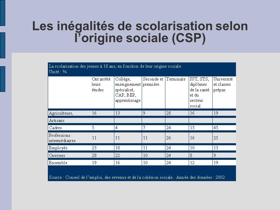 Les inégalités de scolarisation selon lorigine sociale (CSP)