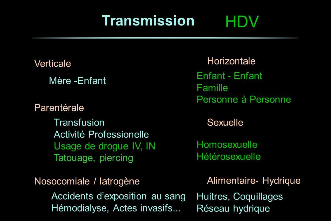 Transmission Verticale Parentérale Nosocomiale / Iatrogène Horizontale Sexuelle Mère -Enfant Enfant - Enfant Famille Personne à Personne Homosexuelle