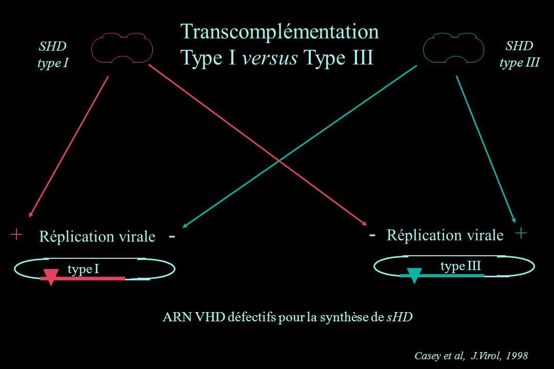 SHD type I SHD type III Casey et al, J.Virol, 1998 + Réplication virale - type III - Réplication virale + ARN VHD défectifs pour la synthèse de sHD ty