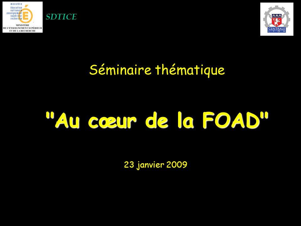 SDTICE Séminaire thématique Au cœur de la FOAD 23 janvier 2009