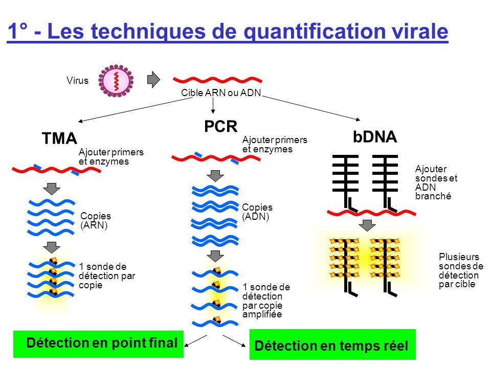 bDNA Plusieurs sondes de détection par cible Ajouter sondes et ADN branché TMA Copies (ARN) Ajouter primers et enzymes 1 sonde de détection par copie
