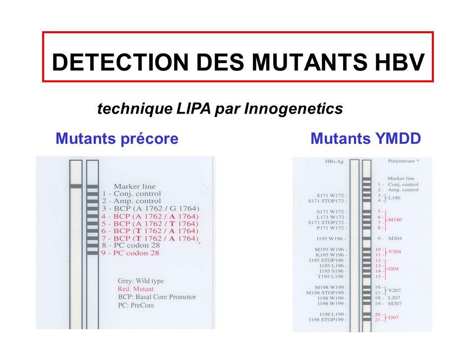 DETECTION DES MUTANTS HBV technique LIPA par Innogenetics Mutants précoreMutants YMDD