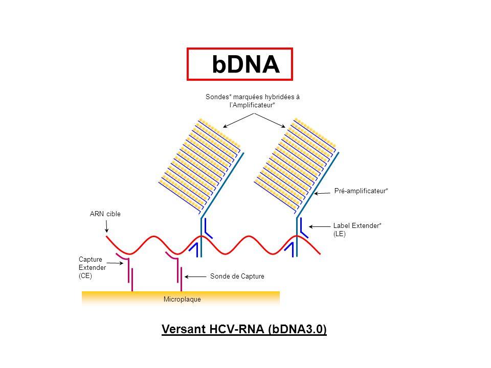 3UT5UT C E1 E2/NS NS2NS3NS4NS5 StructuralNon-Structural HCV RNA 1 18 129 214 297 392 487 578 658 753 1 18 129 214 297 392 487 578 658 753 Spacer (SP) Capture Extender (CE) Label Extender (LE) 17 sondes de capture permettant une quantification Équivalente de tous les génotypes Versant HCV-RNA (bDNA3.0) bDNA