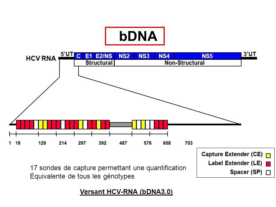 Caractéristiques Versant HCV RNA bDNA 5 Standards Gamme détalonnage externe Phage recombinant Contrôles 1 Positif Fort 1 Positif faible 1 Négatif (simple) Linéarité 3.200 – 40.10 6 copies/ml 615 – 7,7.10 6 UI/ml Type Échantillon Plasma ou sérum Volume échantillon 50 µl Instrumentation Système 340 ou 440 bDNA