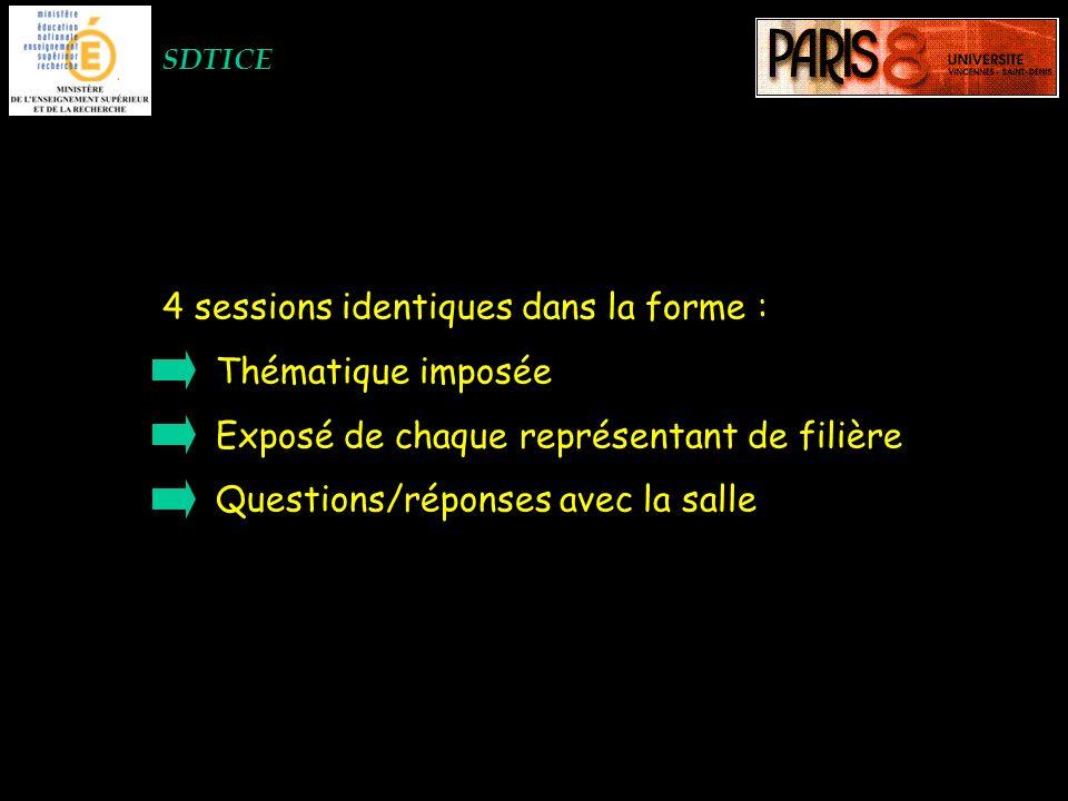 SDTICE 4 sessions identiques dans la forme : Thématique imposée Exposé de chaque représentant de filière Questions/réponses avec la salle
