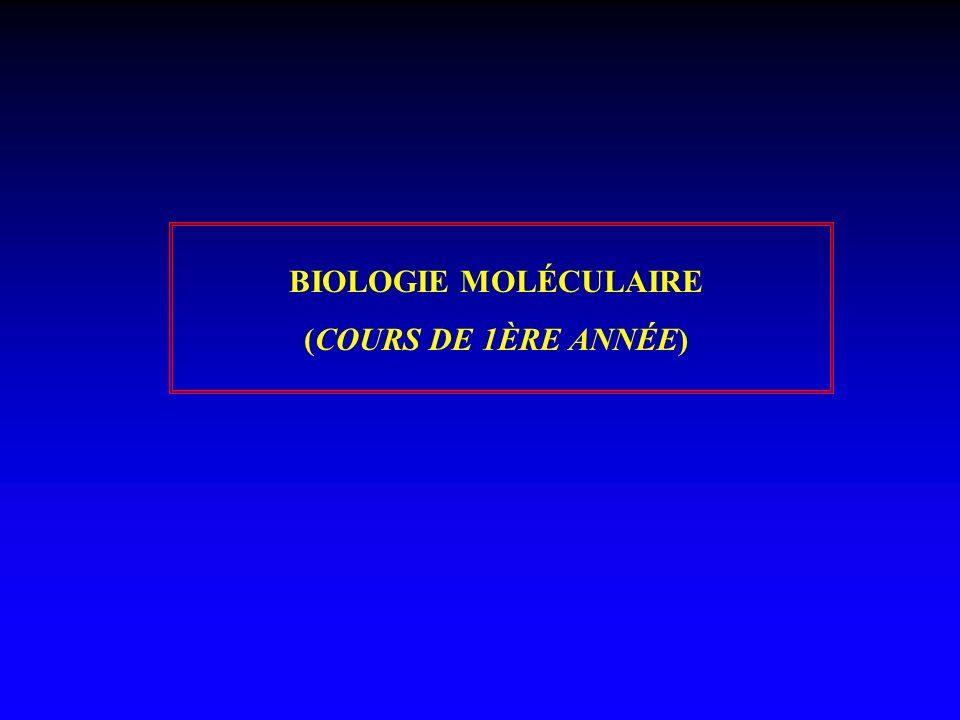 BIOLOGIE MOLÉCULAIRE (COURS DE 1ÈRE ANNÉE)