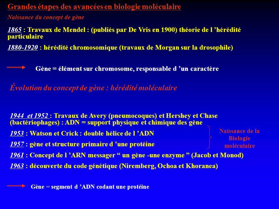 Grandes étapes des avancées en biologie moléculaire 1865 : Travaux de Mendel : (publiés par De Vris en 1900) théorie de l hérédité particulaire 1880-1