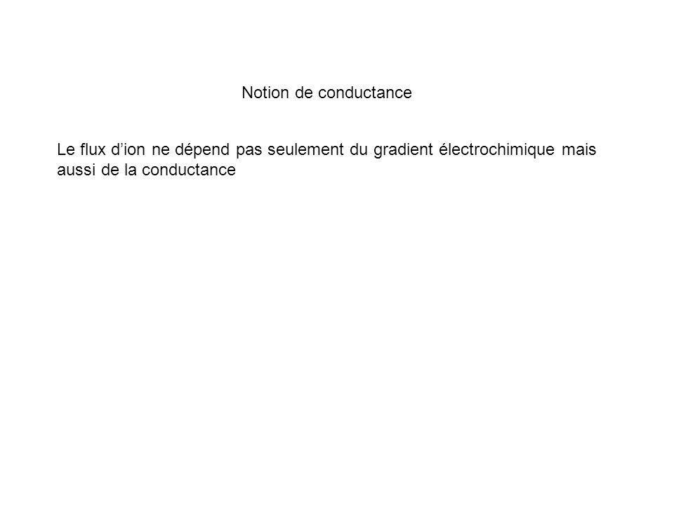 Le flux dion ne dépend pas seulement du gradient électrochimique mais aussi de la conductance Notion de conductance