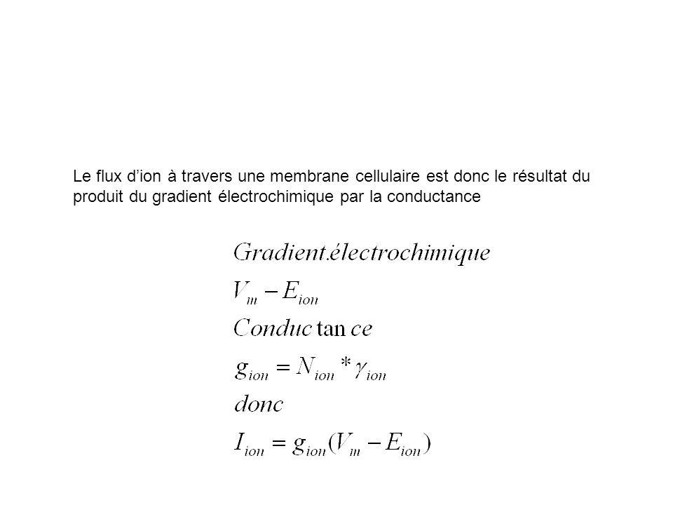 Le flux dion à travers une membrane cellulaire est donc le résultat du produit du gradient électrochimique par la conductance