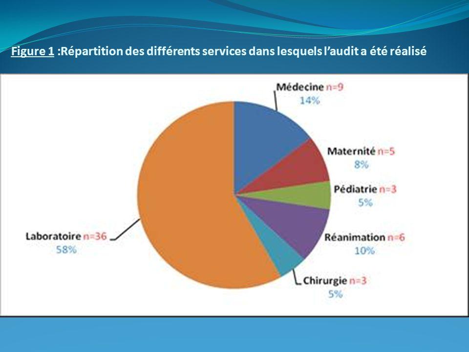 Figure 1 :Répartition des différents services dans lesquels laudit a été réalisé