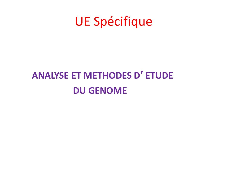RNA (purple) has bound to its DNA probe built on the array RNA Fluorescent Stain Biotin After staining, RNA (purple) bound to the DNA probe built on the array will fluoresce Chaque espèce dARN va hybrider avec la sonde dADN correspondante sur la puce préalablment chargée de sondes dADN.