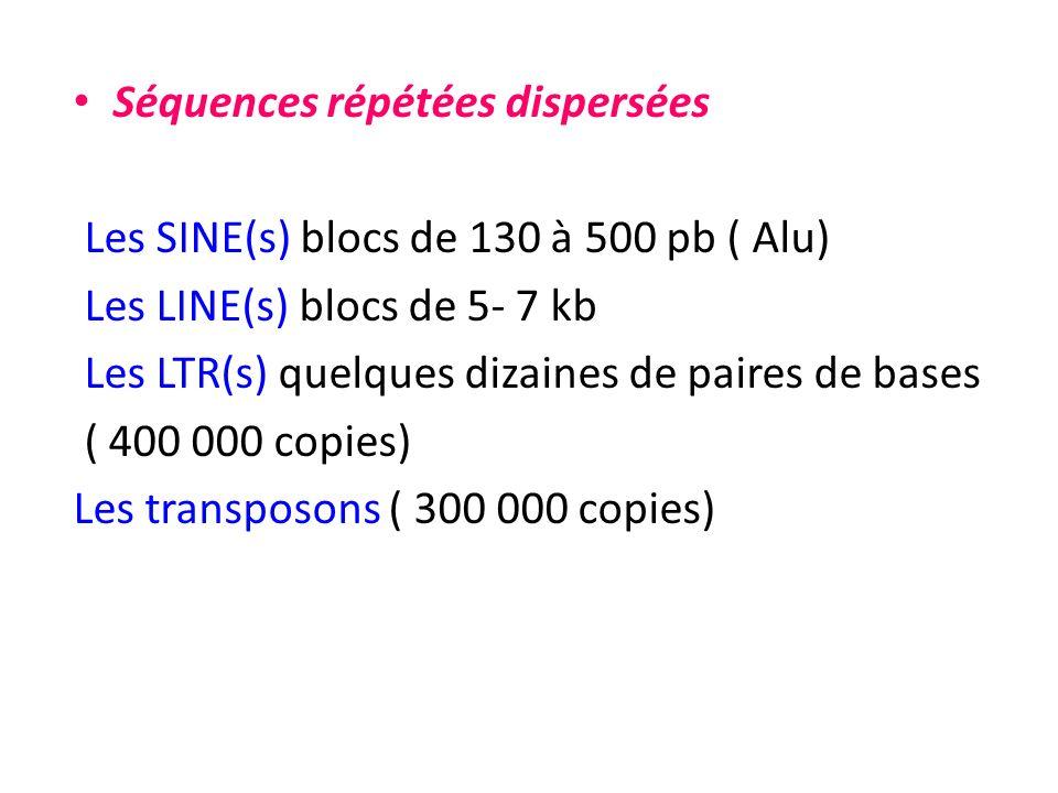 Séquences répétées dispersées Les SINE(s) blocs de 130 à 500 pb ( Alu) Les LINE(s) blocs de 5- 7 kb Les LTR(s) quelques dizaines de paires de bases (