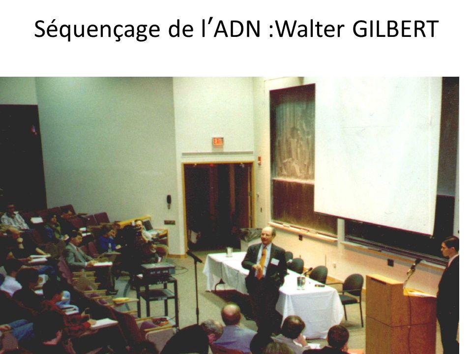 Séquençage de lADN :Walter GILBERT