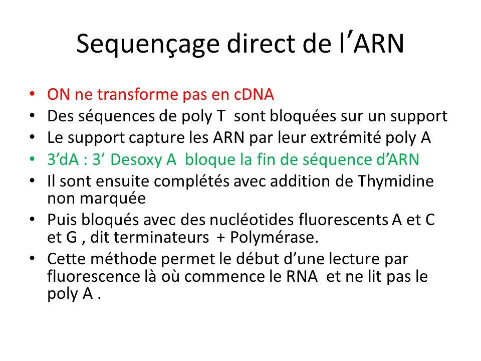 Sequençage direct de lARN ON ne transforme pas en cDNA Des séquences de poly T sont bloquées sur un support Le support capture les ARN par leur extrém