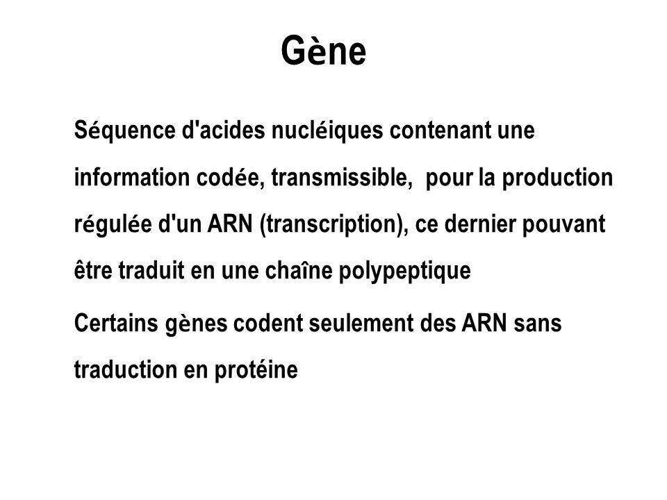 G è ne S é quence d'acides nucl é iques contenant une information cod é e, transmissible, pour la production r é gul é e d'un ARN (transcription), ce