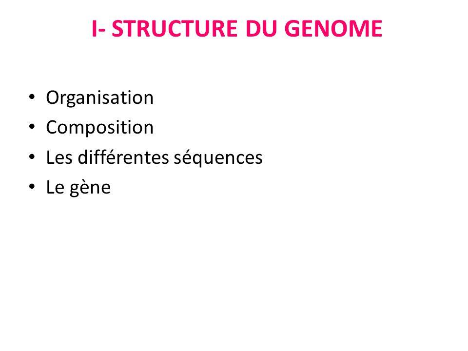 I- STRUCTURE DU GENOME Organisation Composition Les différentes séquences Le gène