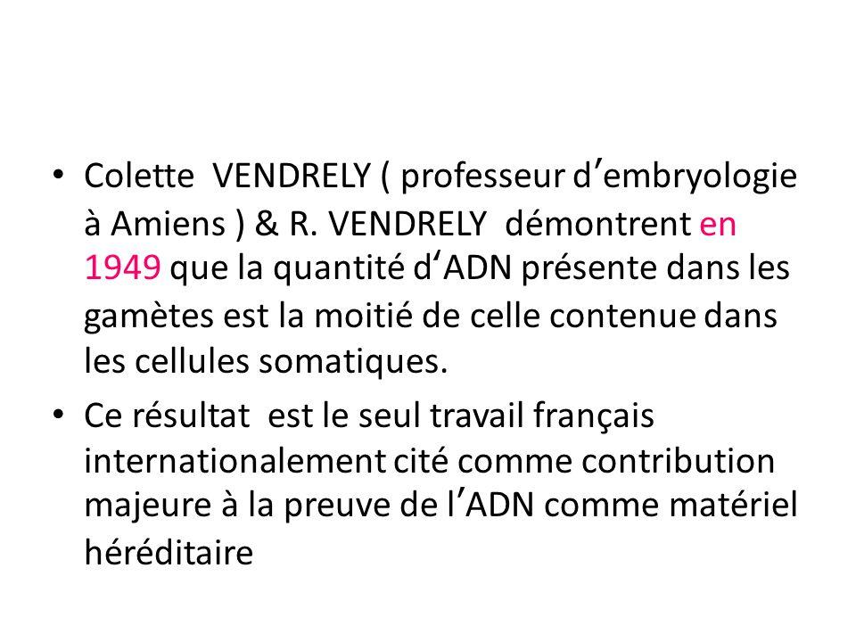 Colette VENDRELY ( professeur dembryologie à Amiens ) & R. VENDRELY démontrent en 1949 que la quantité dADN présente dans les gamètes est la moitié de