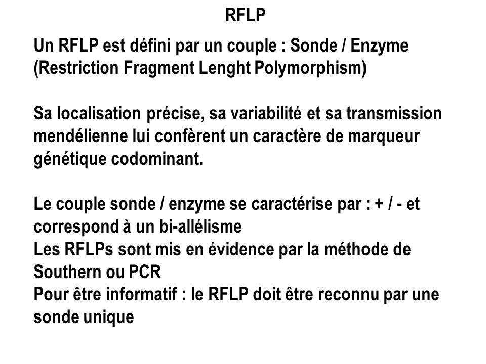RFLP Un RFLP est défini par un couple : Sonde / Enzyme (Restriction Fragment Lenght Polymorphism) Sa localisation précise, sa variabilité et sa transm