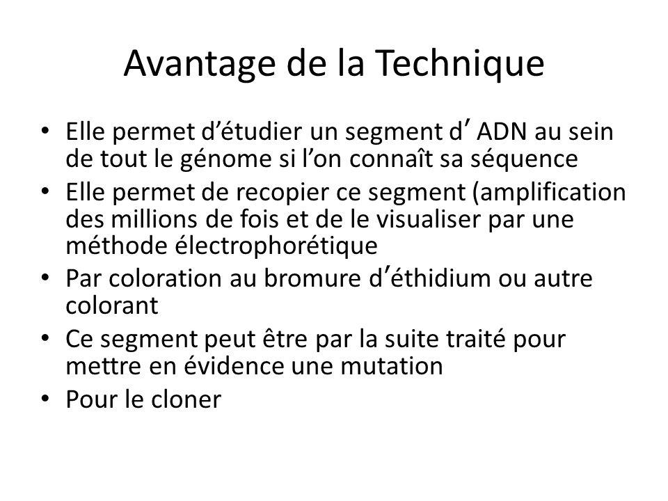 Avantage de la Technique Elle permet détudier un segment d ADN au sein de tout le génome si lon connaît sa séquence Elle permet de recopier ce segment