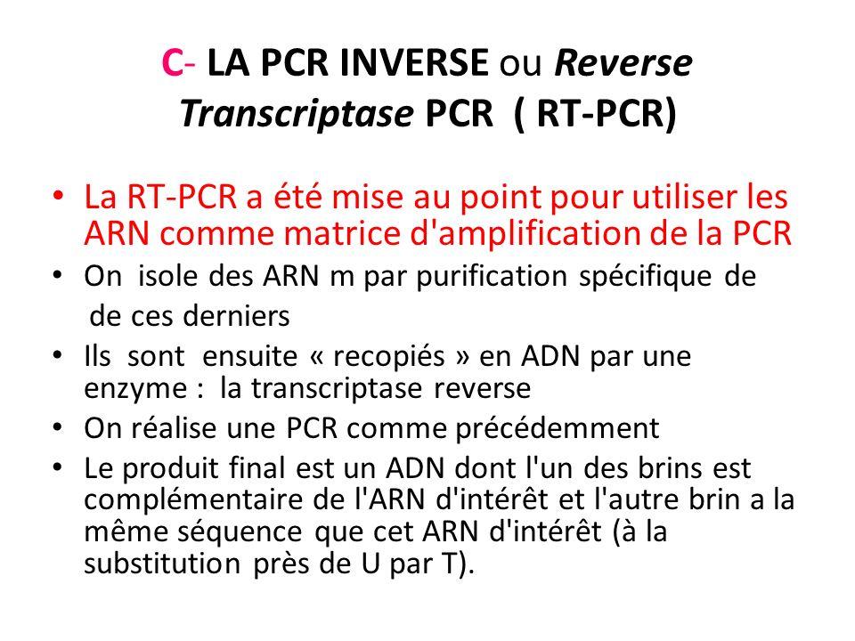 C- LA PCR INVERSE ou Reverse Transcriptase PCR ( RT-PCR) La RT-PCR a été mise au point pour utiliser les ARN comme matrice d'amplification de la PCR O