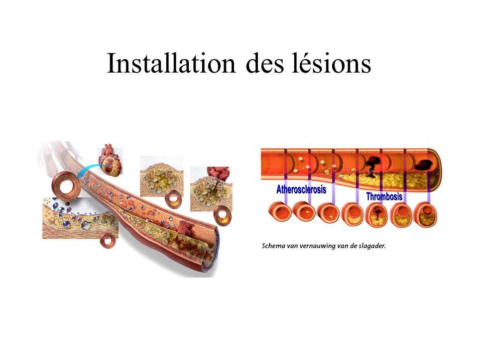 Installation des lésions