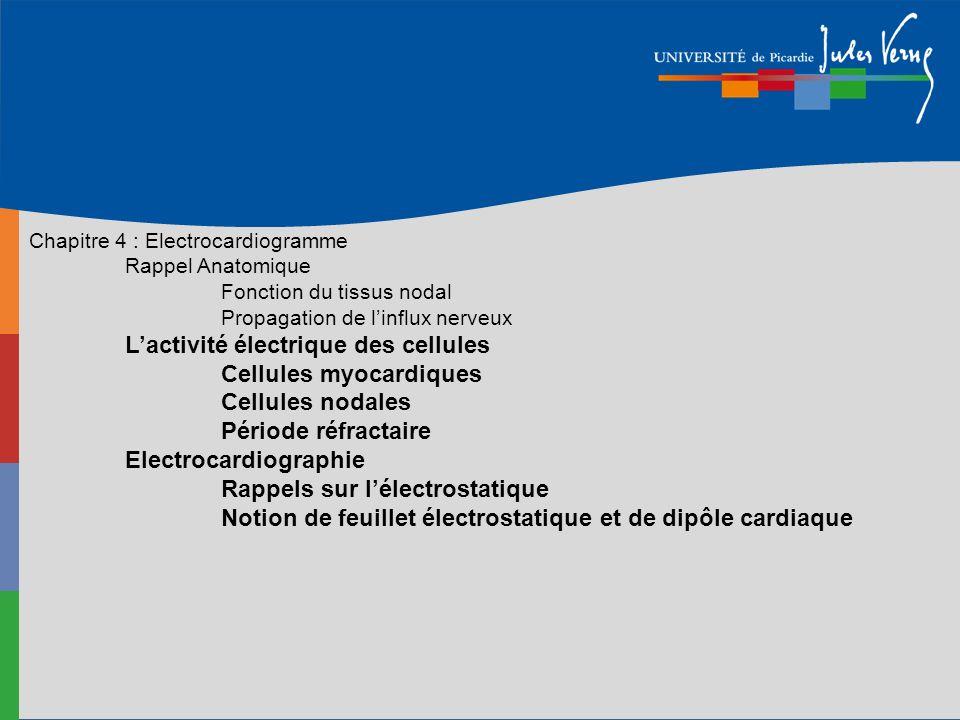 Chapitre 4 : Electrocardiogramme Rappel Anatomique Fonction du tissus nodal Propagation de linflux nerveux Lactivité électrique des cellules Cellules