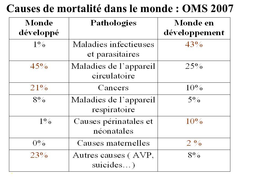 Causes de mortalité dans le monde : OMS 2007
