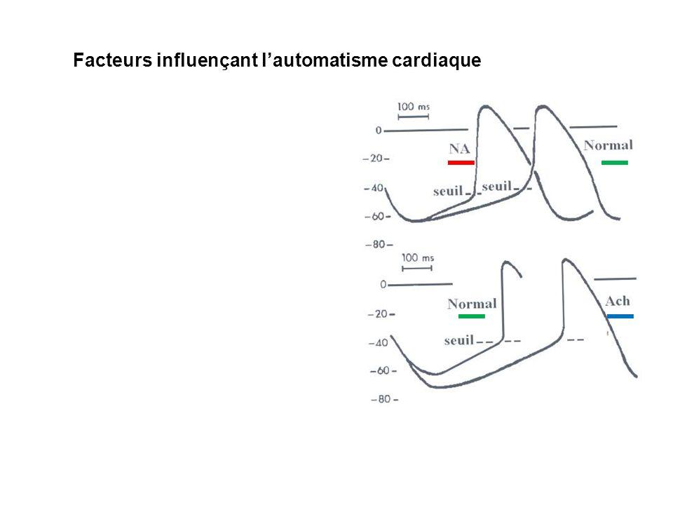 Facteurs influençant lautomatisme cardiaque