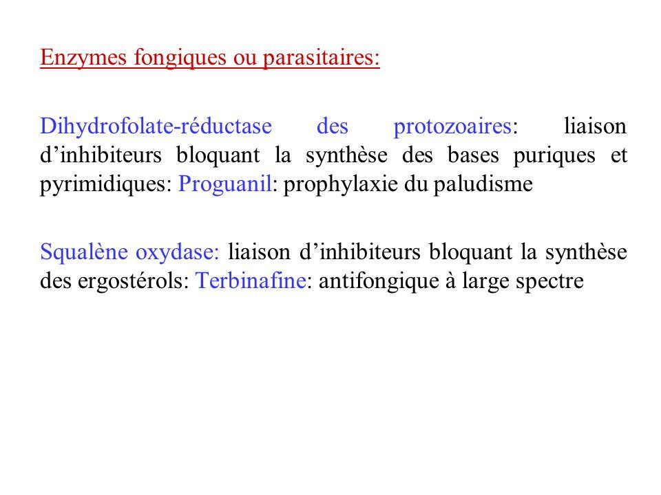 Enzymes fongiques ou parasitaires: Dihydrofolate-réductase des protozoaires: liaison dinhibiteurs bloquant la synthèse des bases puriques et pyrimidiq