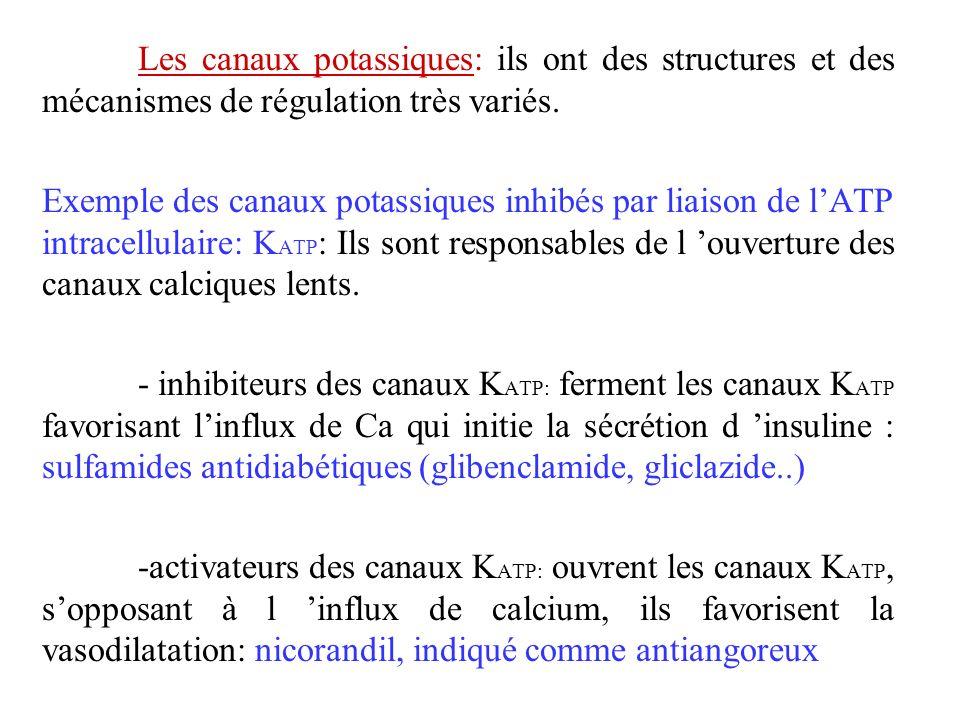 Les canaux potassiques: ils ont des structures et des mécanismes de régulation très variés. Exemple des canaux potassiques inhibés par liaison de lATP
