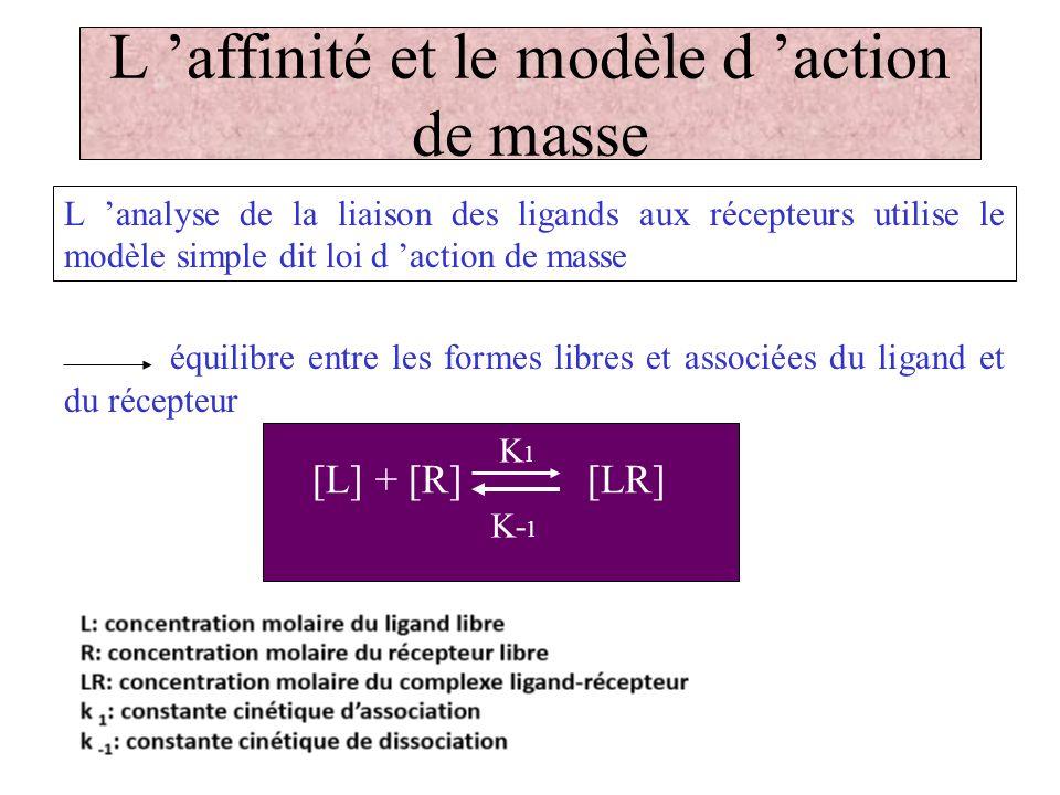 L affinité et le modèle d action de masse L analyse de la liaison des ligands aux récepteurs utilise le modèle simple dit loi d action de masse équili