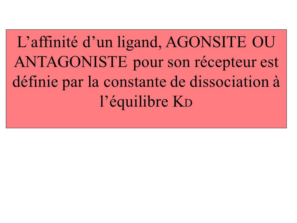 Laffinité dun ligand, AGONSITE OU ANTAGONISTE pour son récepteur est définie par la constante de dissociation à léquilibre K D