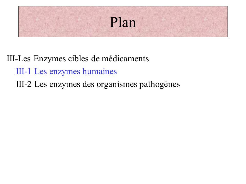 Plan III-Les Enzymes cibles de médicaments III-1 Les enzymes humaines III-2 Les enzymes des organismes pathogènes