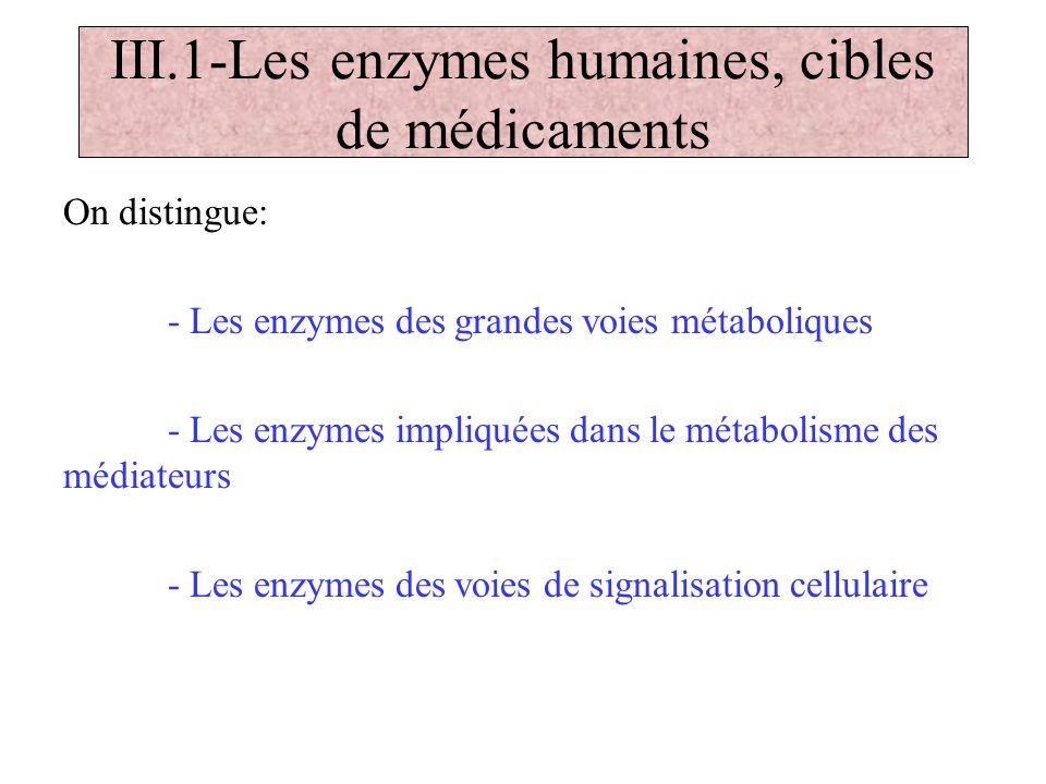 III.1-Les enzymes humaines, cibles de médicaments On distingue: - Les enzymes des grandes voies métaboliques - Les enzymes impliquées dans le métaboli
