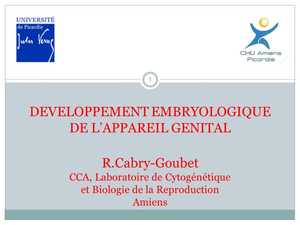 1 DEVELOPPEMENT EMBRYOLOGIQUE DE LAPPAREIL GENITAL R.Cabry-Goubet CCA, Laboratoire de Cytogénétique et Biologie de la Reproduction Amiens