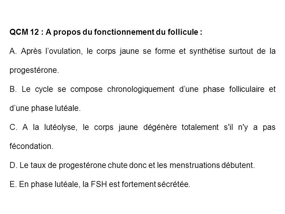 QCM 12 : A propos du fonctionnement du follicule : A. Après lovulation, le corps jaune se forme et synthétise surtout de la progestérone. B. Le cycle