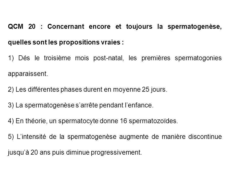 QCM 20 : Concernant encore et toujours la spermatogenèse, quelles sont les propositions vraies : 1) Dés le troisième mois post-natal, les premières sp