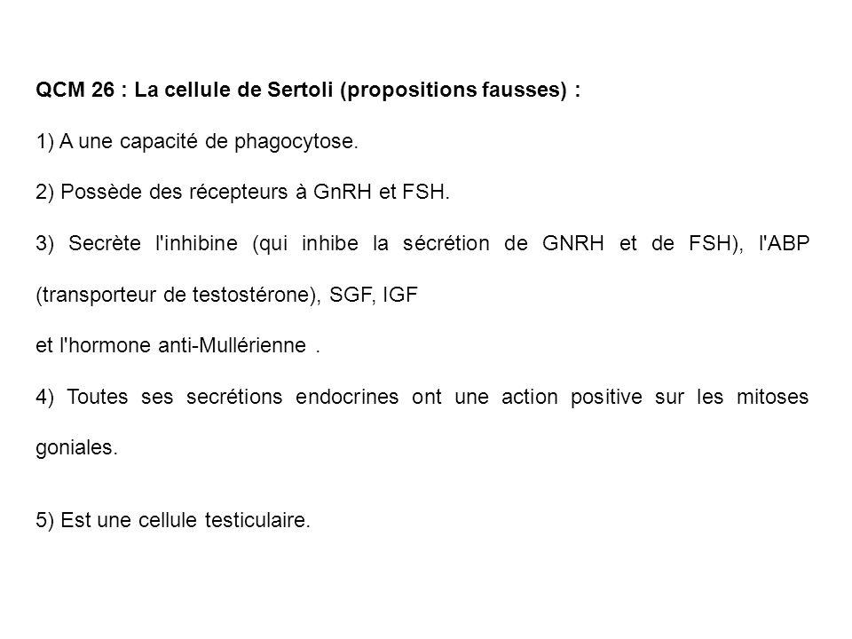 QCM 26 : La cellule de Sertoli (propositions fausses) : 1) A une capacité de phagocytose. 2) Possède des récepteurs à GnRH et FSH. 3) Secrète l'inhibi