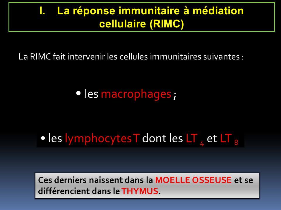 La RIMC fait intervenir les cellules immunitaires suivantes : les macrophages ; les lymphocytes T dont les LT 4 et LT 8 Ces derniers naissent dans la MOELLE OSSEUSE et se différencient dans le THYMUS.