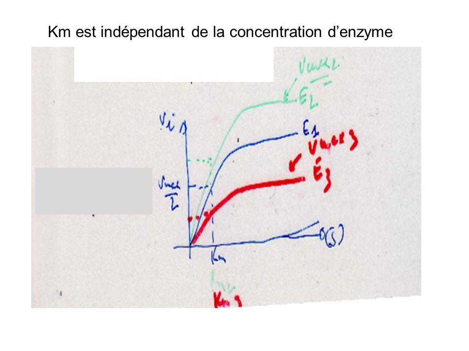 Km est indépendant de la concentration denzyme